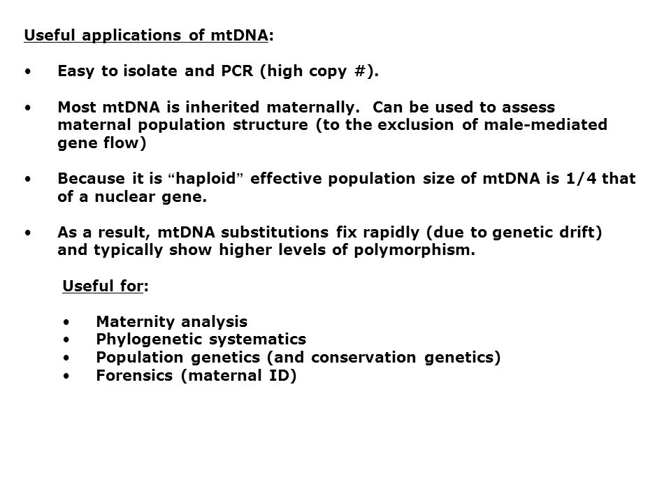 Useful applications of mtDNA: Easy to isolate and PCR (high copy #). Most mtDNA is inherited maternally. Can be used to assess maternal population str