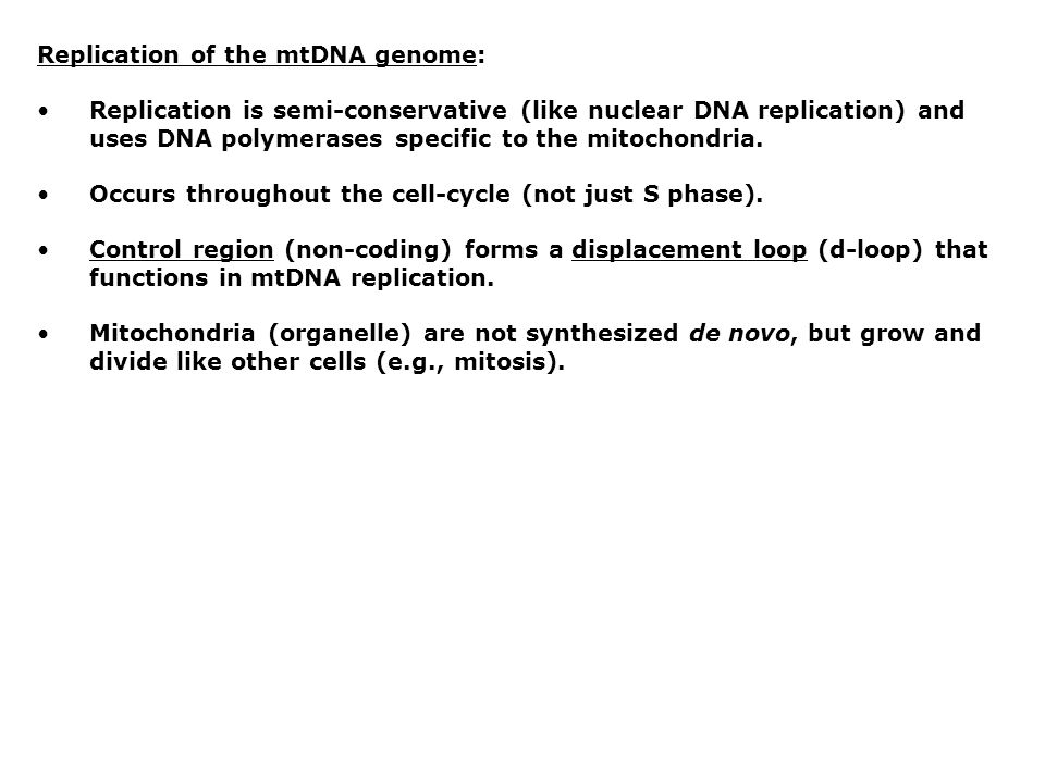 Replication of the mtDNA genome: Replication is semi-conservative (like nuclear DNA replication) and uses DNA polymerases specific to the mitochondria