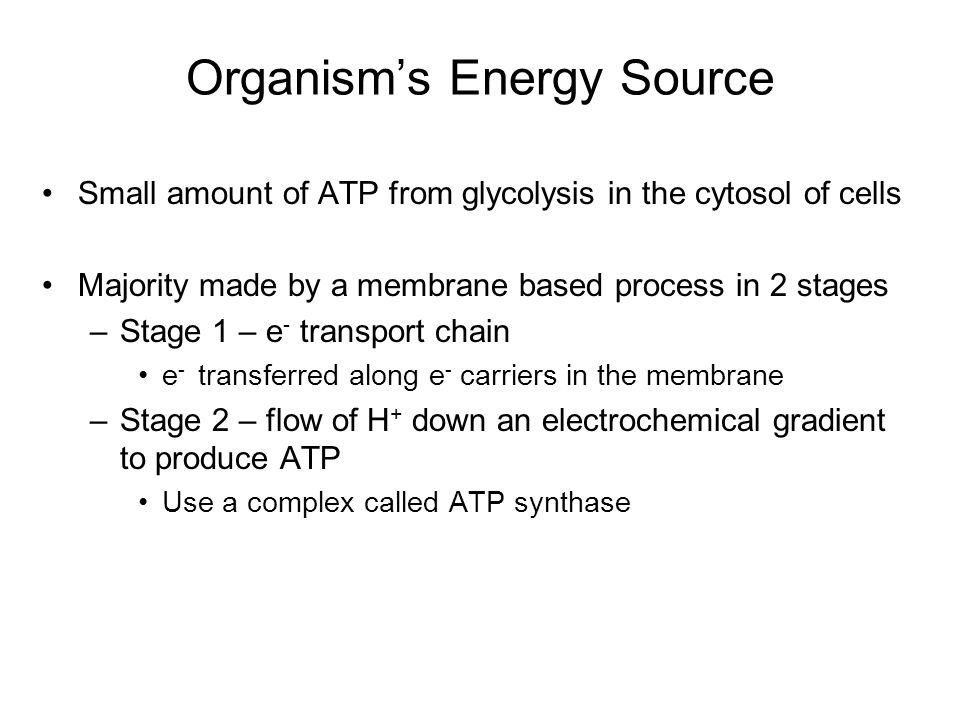 Oxidative Phosphorylation ATP synthase is the protein complex responsible for making ATP by creating a path for H + thru the membrane ATP synthase is an enzyme