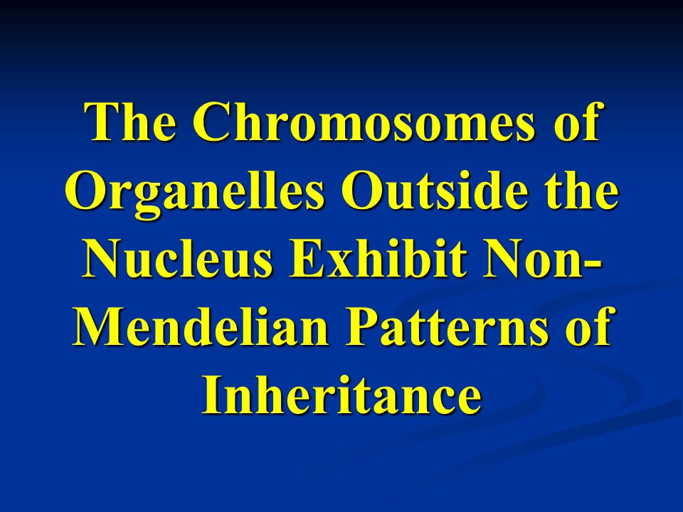 The Chromosomes of Organelles Outside the Nucleus Exhibit Non- Mendelian Patterns of Inheritance