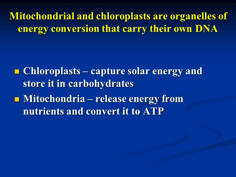 Mitochondrial and chloroplasts are organelles of energy conversion that carry their own DNA Chloroplasts – capture solar energy and store it in carbohydrates Chloroplasts – capture solar energy and store it in carbohydrates Mitochondria – release energy from nutrients and convert it to ATP Mitochondria – release energy from nutrients and convert it to ATP