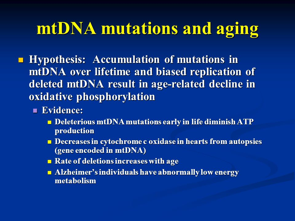 mtDNA mutations and aging Hypothesis: Accumulation of mutations in mtDNA over lifetime and biased replication of deleted mtDNA result in age-related decline in oxidative phosphorylation Hypothesis: Accumulation of mutations in mtDNA over lifetime and biased replication of deleted mtDNA result in age-related decline in oxidative phosphorylation Evidence: Evidence: Deleterious mtDNA mutations early in life diminish ATP production Deleterious mtDNA mutations early in life diminish ATP production Decreases in cytochrome c oxidase in hearts from autopsies (gene encoded in mtDNA) Decreases in cytochrome c oxidase in hearts from autopsies (gene encoded in mtDNA) Rate of deletions increases with age Rate of deletions increases with age Alzheimer's individuals have abnormally low energy metabolism Alzheimer's individuals have abnormally low energy metabolism