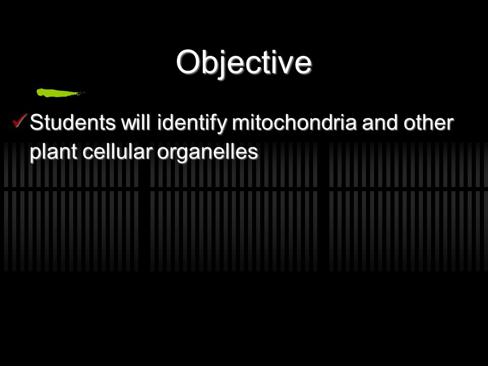 identification of mitochondria in plant cells frey scientific, Presentation templates