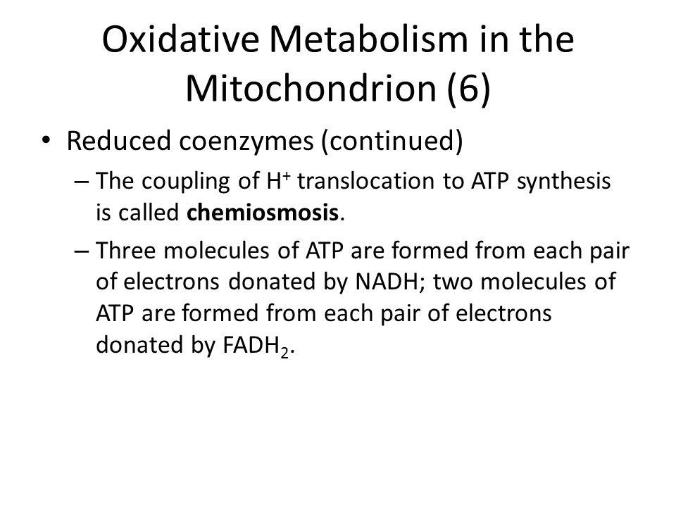 Oxidative Metabolism in the Mitochondrion (6) Reduced coenzymes (continued) – The coupling of H + translocation to ATP synthesis is called chemiosmosi