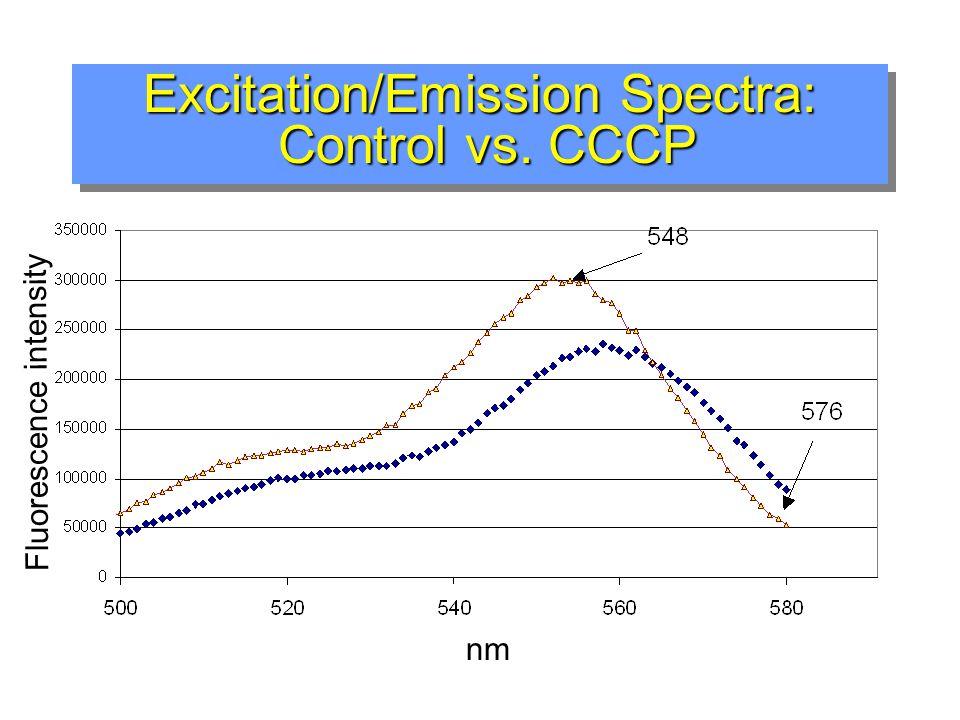 controlcontrol CCCP-treatedCCCP-treated CCCP disrupts  m in MA10s