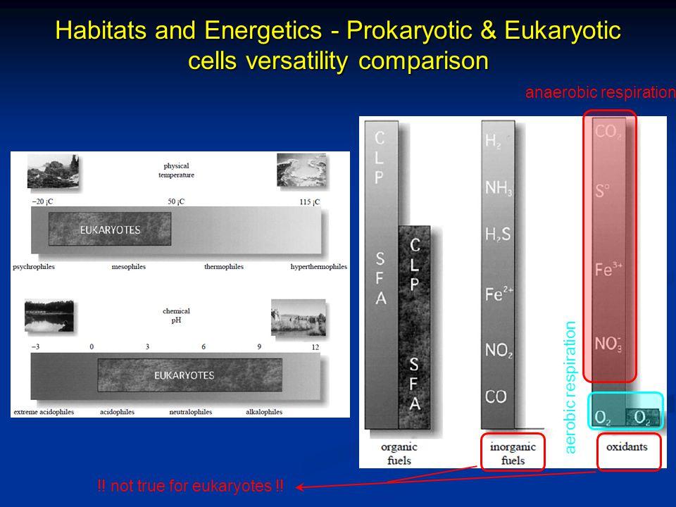 Habitats and Energetics - Prokaryotic & Eukaryotic cells versatility comparison !.