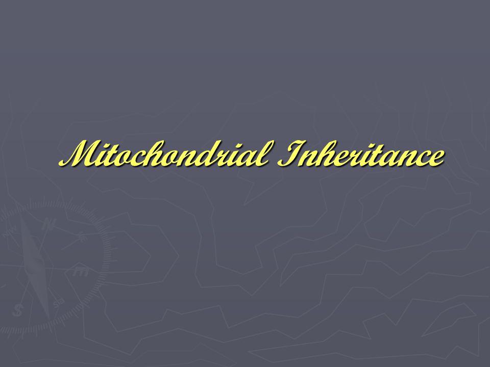 Mitochondrial Inheritance