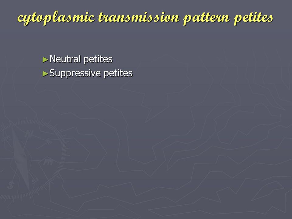 cytoplasmic transmission pattern petites ► Neutral petites ► Suppressive petites