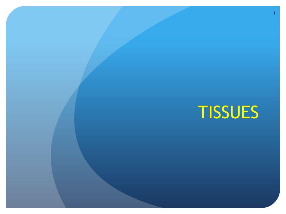 Elastic Cartilage (elastin fibers) Figure 4.12h Found in the ear 62