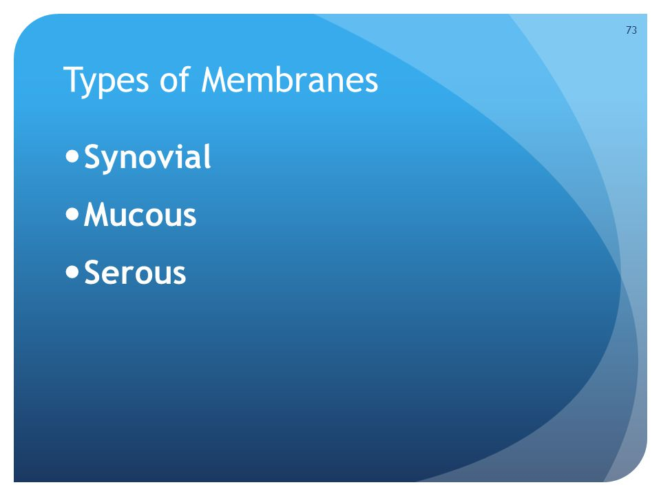 Types of Membranes Synovial Mucous Serous 73