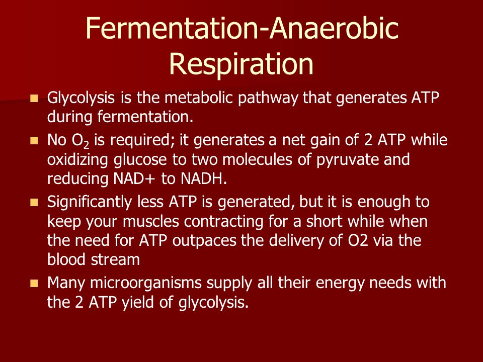 Fermentation-Anaerobic Respiration Glycolysis is the metabolic pathway that generates ATP during fermentation. No O 2 is required; it generates a net