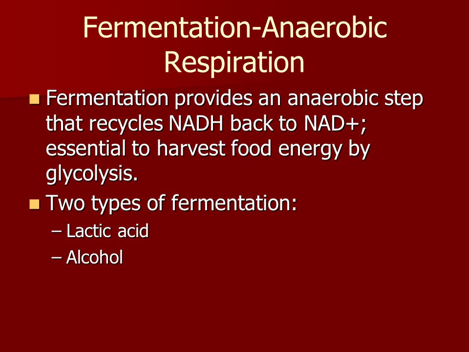 Fermentation-Anaerobic Respiration Fermentation provides an anaerobic step that recycles NADH back to NAD+; essential to harvest food energy by glycol