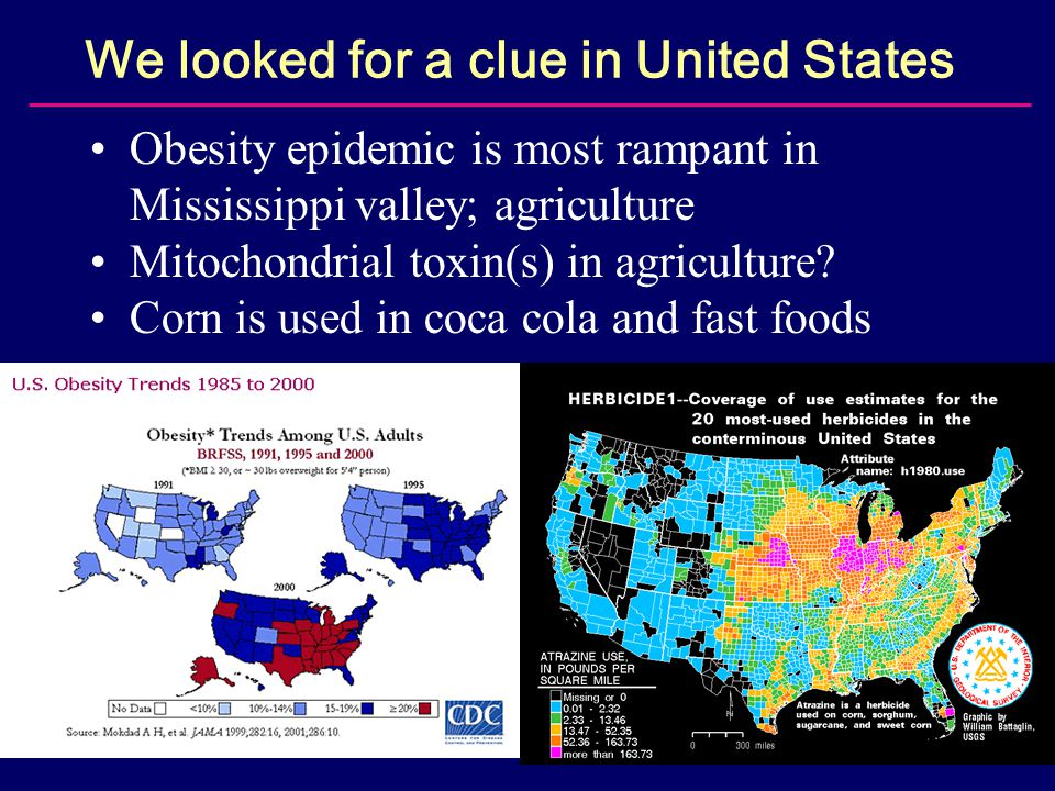 We looked for a clue in United States Obesity epidemic is most rampant in Mississippi valley; agriculture Mitochondrial toxin(s) in agriculture.