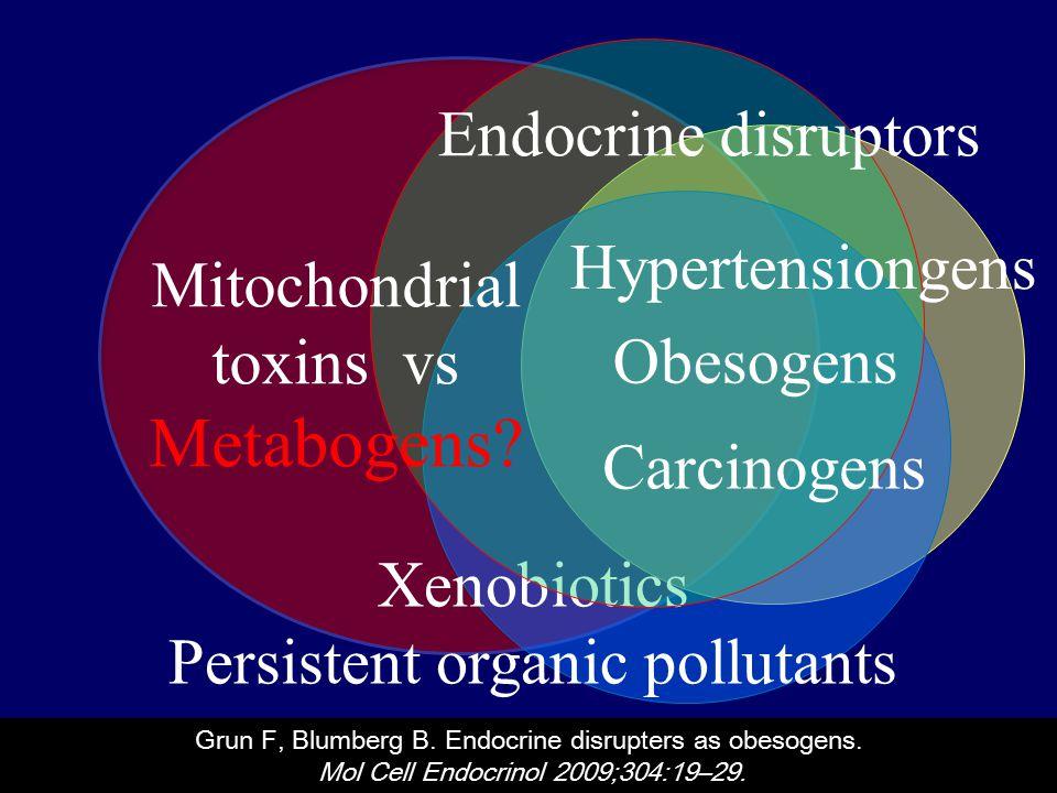 Xenobiotics Persistent organic pollutants Obesogens Carcinogens Mitochondrial toxins vs Metabogens.