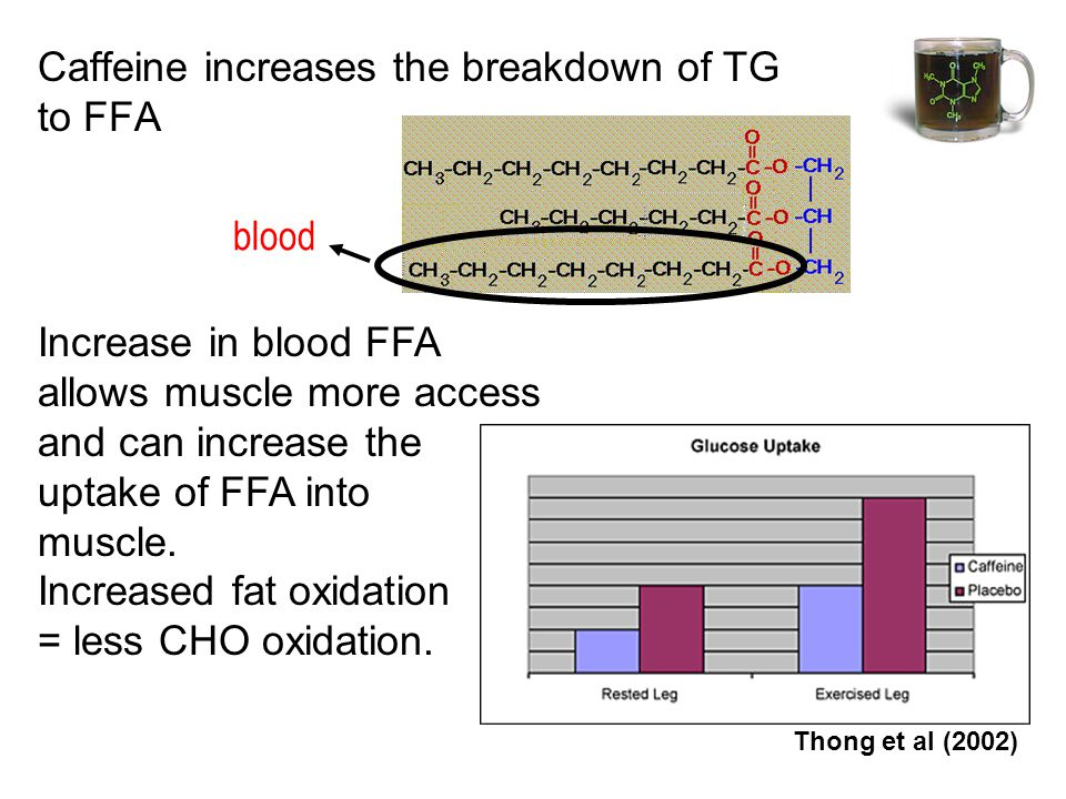 Caffeine increases the breakdown of TG to FFA blood Increase in blood FFA allows muscle more access and can increase the uptake of FFA into muscle.