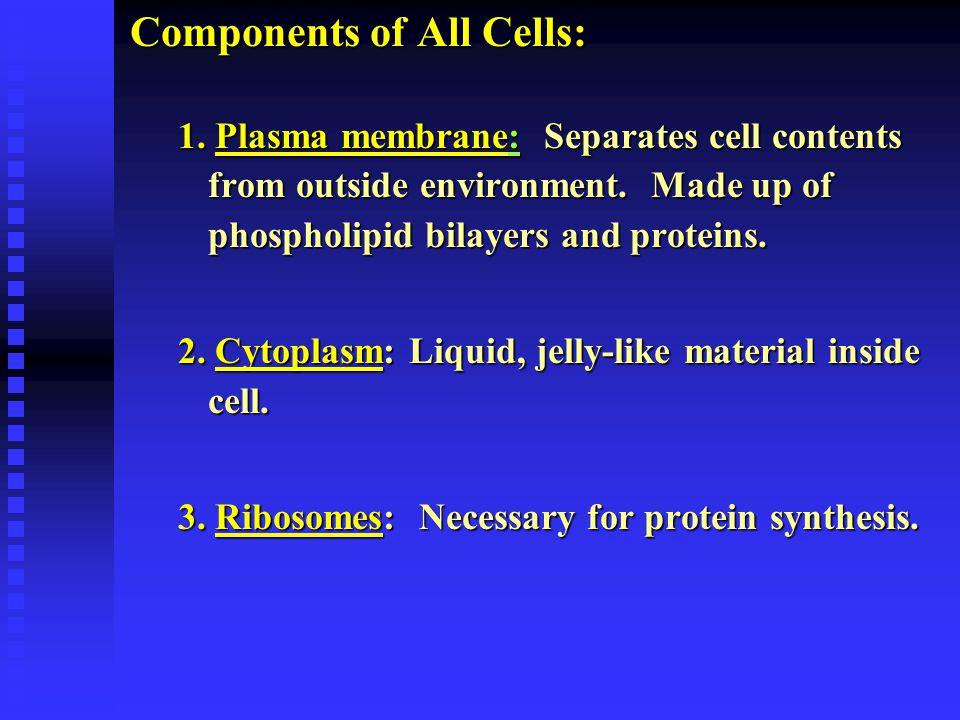 Lysosomes: Intracellular Digestion