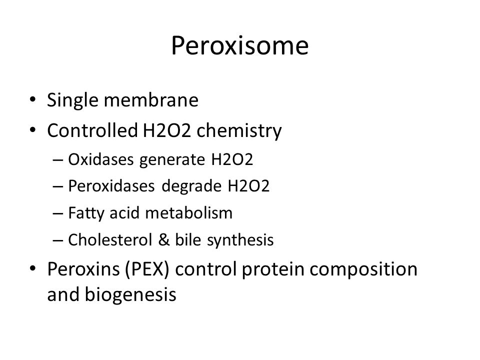 Peroxisome Single membrane Controlled H2O2 chemistry – Oxidases generate H2O2 – Peroxidases degrade H2O2 – Fatty acid metabolism – Cholesterol & bile synthesis Peroxins (PEX) control protein composition and biogenesis