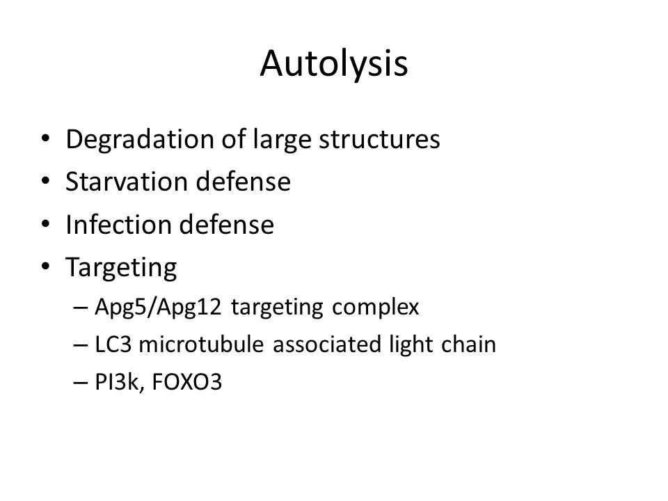 Autolysis Degradation of large structures Starvation defense Infection defense Targeting – Apg5/Apg12 targeting complex – LC3 microtubule associated light chain – PI3k, FOXO3