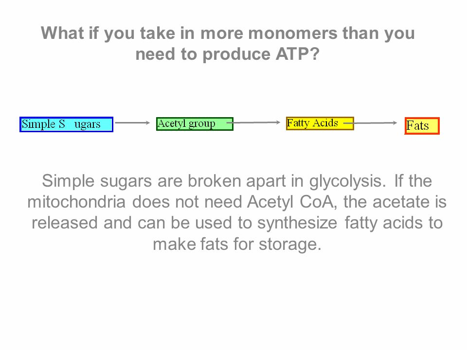 What if you take in more monomers than you need to produce ATP.