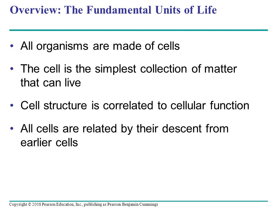 Overview: The Fundamental Units of Life All organisms are made of cells The cell is the simplest collection of matter that can live Cell structure is