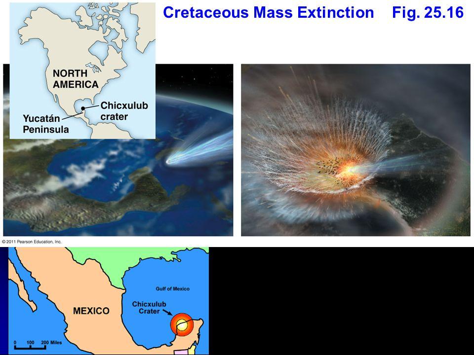 Fig. 25.16Cretaceous Mass Extinction