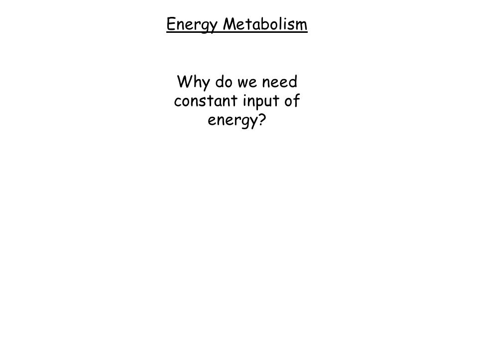 Energy Metabolism Why do we need constant input of energy?