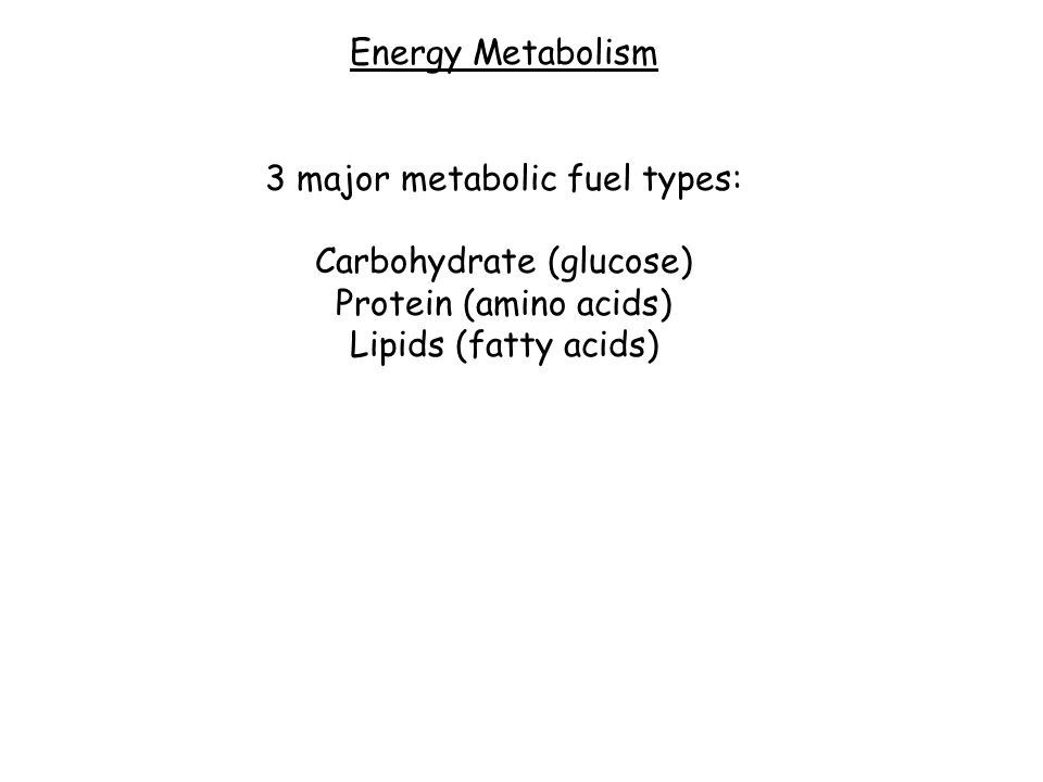 Energy Metabolism 3 major metabolic fuel types: Carbohydrate (glucose) Protein (amino acids) Lipids (fatty acids)