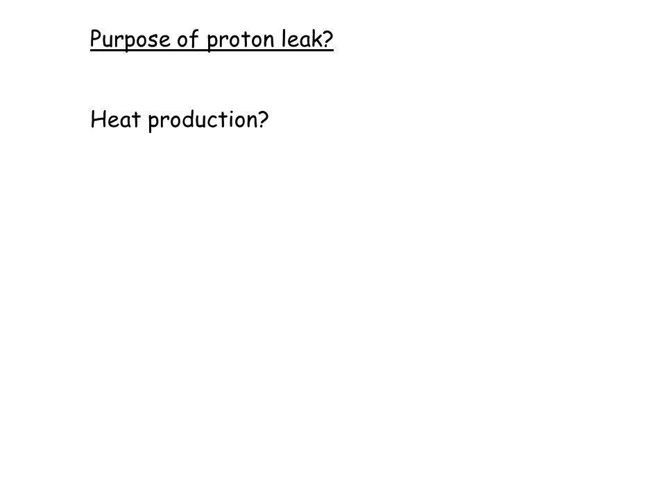 Purpose of proton leak? Heat production?