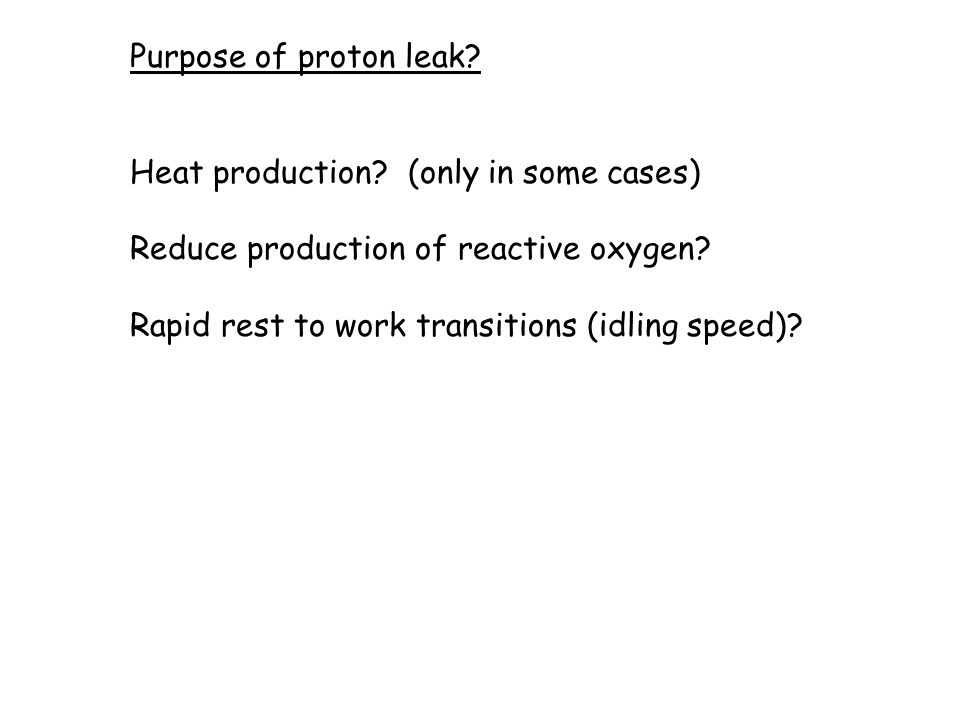 Purpose of proton leak. Heat production.