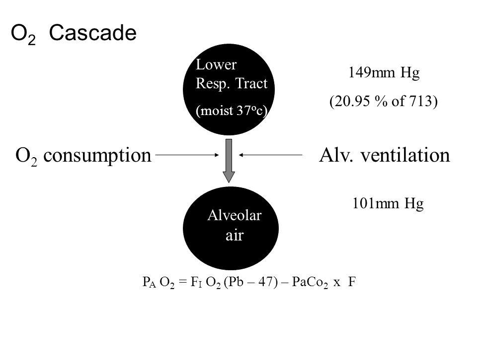 O 2 Cascade 149mm Hg (20.95 % of 713) O 2 consumption Lower Resp. Tract (moist 37 o c) Alv. ventilation Alveolar air 101mm Hg P A O 2 = F I O 2 (Pb –