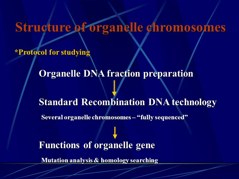Structure of organelle chromosomes Organelle DNA fraction preparation Organelle DNA fraction preparation Standard Recombination DNA technology Standard Recombination DNA technology Several organelle chromosomes – fully sequenced Several organelle chromosomes – fully sequenced Functions of organelle gene Functions of organelle gene Mutation analysis & homology searching Mutation analysis & homology searching *Protocol for studying