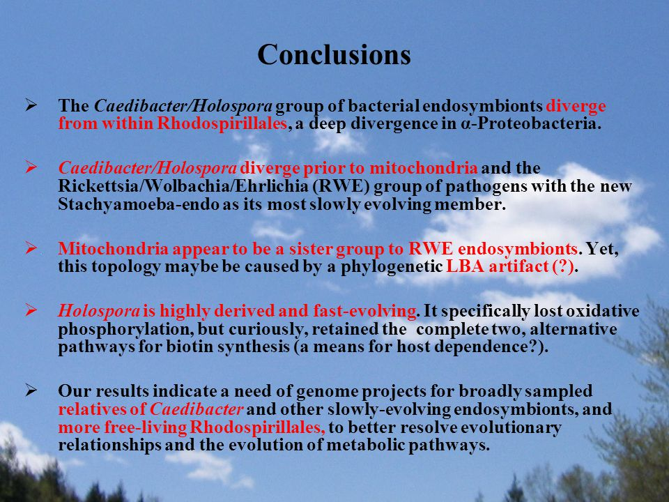 Conclusions  The Caedibacter/Holospora group of bacterial endosymbionts diverge from within Rhodospirillales, a deep divergence in α-Proteobacteria.