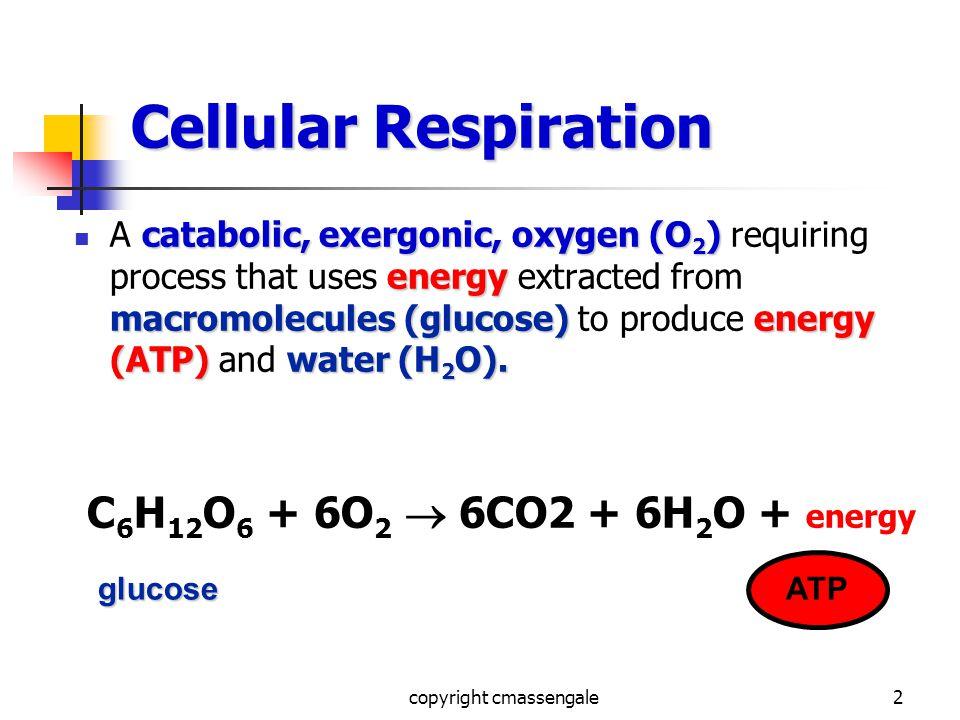 2 Cellular Respiration catabolic, exergonic, oxygen (O 2 ) energy macromolecules (glucose)energy (ATP)water (H 2 O).