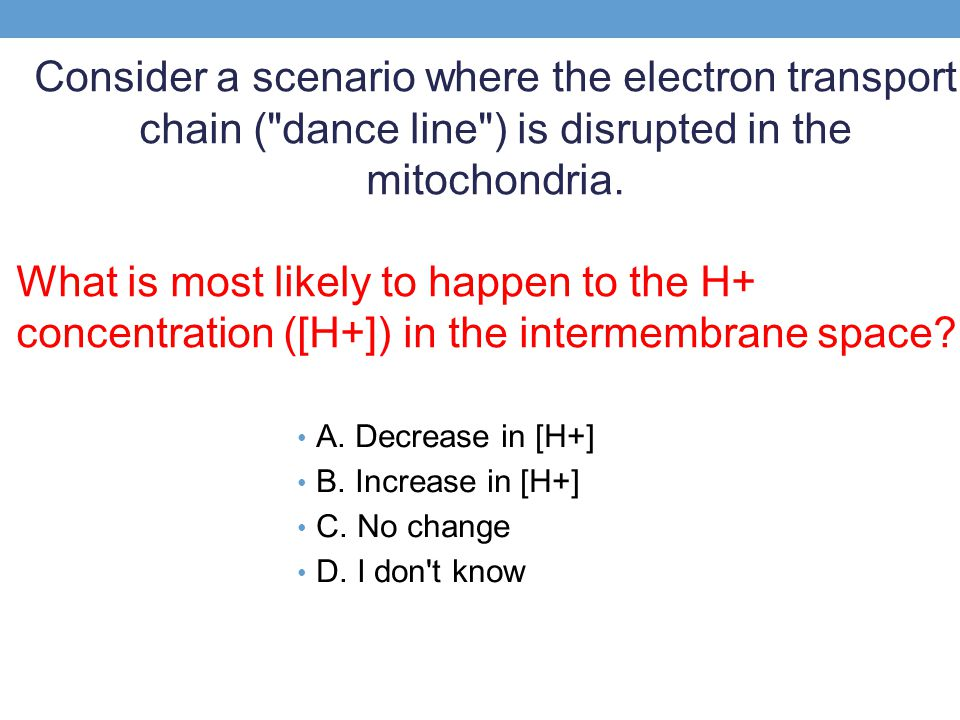 Consider a scenario where the electron transport chain ( dance line ) is disrupted in the mitochondria.