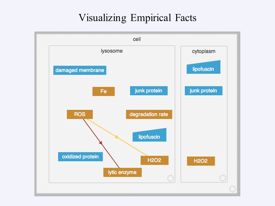 Visualizing Empirical Facts
