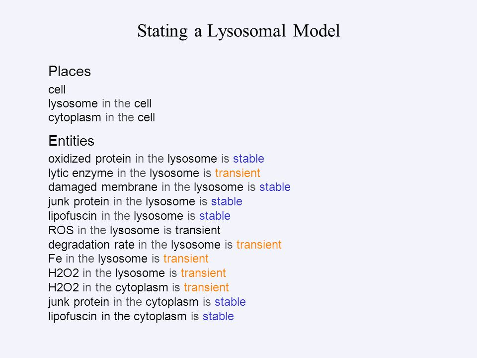 Stating a Lysosomal Model Places cell lysosome in the cell cytoplasm in the cell Entities oxidized protein in the lysosome is stable lytic enzyme in the lysosome is transient damaged membrane in the lysosome is stable junk protein in the lysosome is stable lipofuscin in the lysosome is stable ROS in the lysosome is transient degradation rate in the lysosome is transient Fe in the lysosome is transient H2O2 in the lysosome is transient H2O2 in the cytoplasm is transient junk protein in the cytoplasm is stable lipofuscin in the cytoplasm is stable