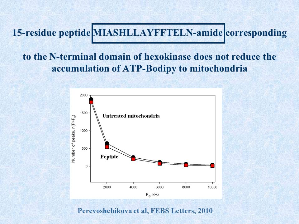 15-residue peptide MIASHLLAYFFTELN-amide corresponding to the N-terminal domain of hexokinase does not reduce the accumulation of ATP-Bodipy to mitoch