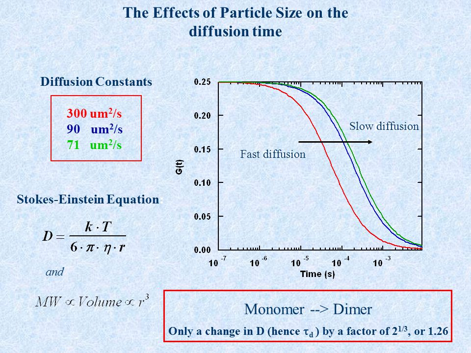 The Effects of Particle Size on the diffusion time 300 um 2 /s 90 um 2 /s 71 um 2 /s Diffusion Constants Fast Diffusion Slow Diffusion Stokes-Einstein
