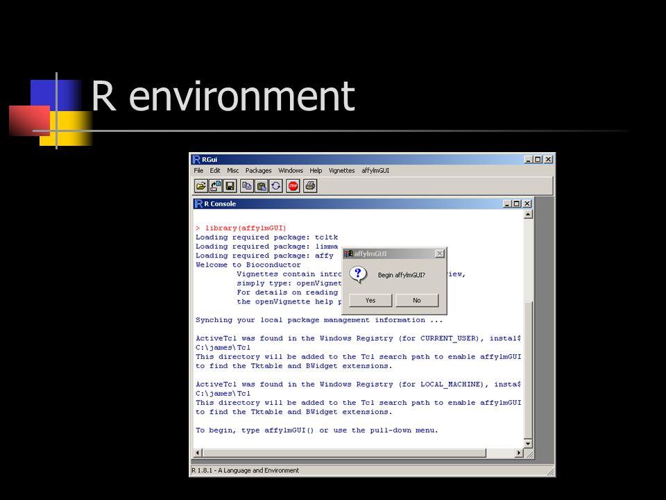 R environment
