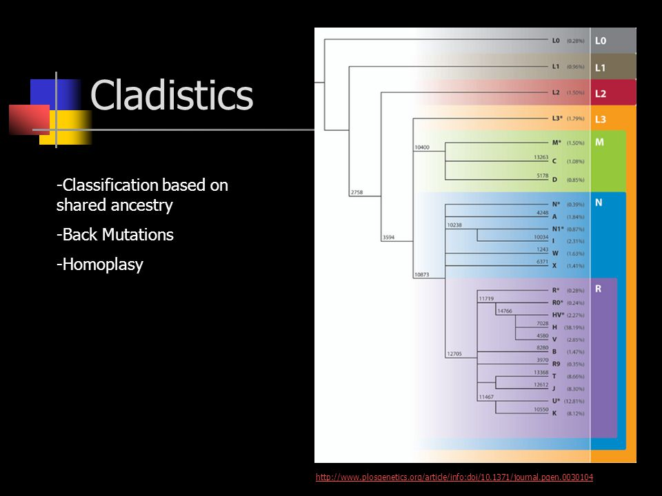 Cladistics -Classification based on shared ancestry -Back Mutations -Homoplasy http://www.plosgenetics.org/article/info:doi/10.1371/journal.pgen.0030104