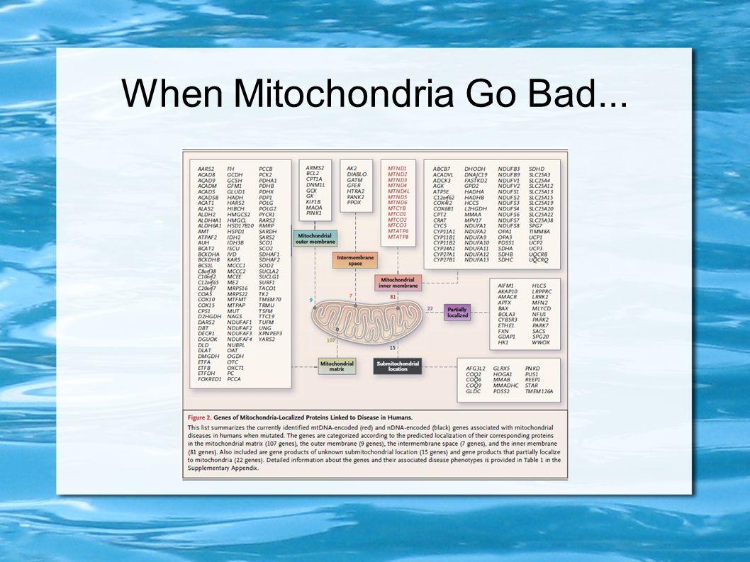When Mitochondria Go Bad...