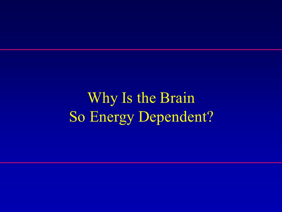 Why Is the Brain So Energy Dependent?