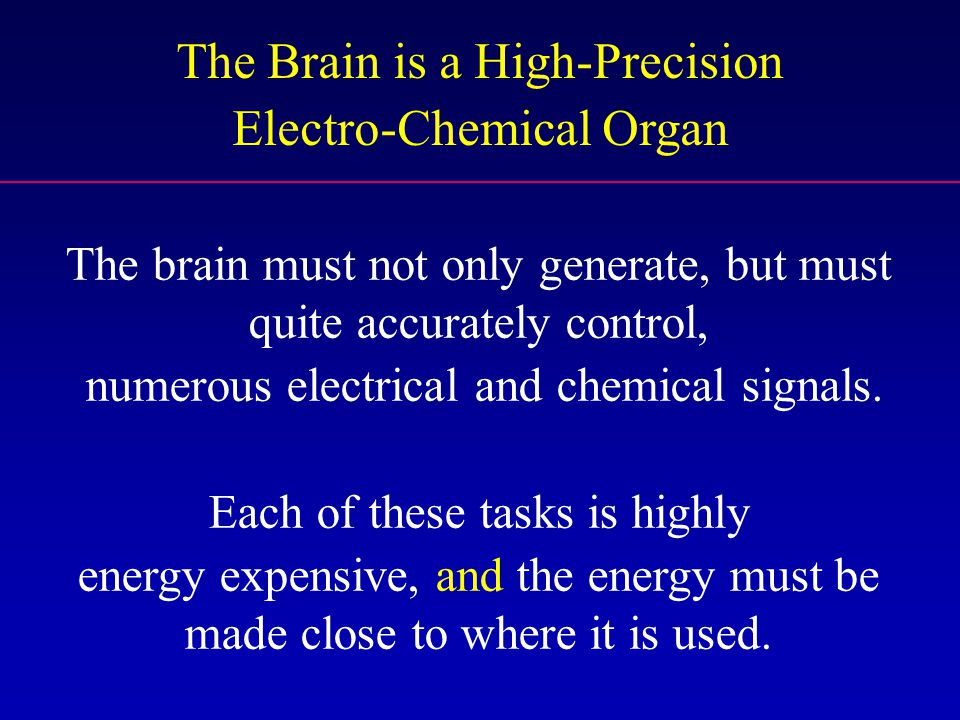 The Brain is a High-Precision Electro-Chemical Organ The brain must not only generate, but must quite accurately control, numerous electrical and chem