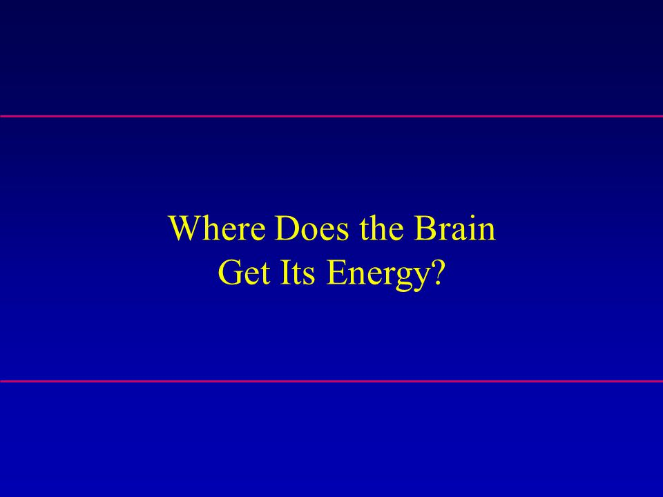 Where Does the Brain Get Its Energy