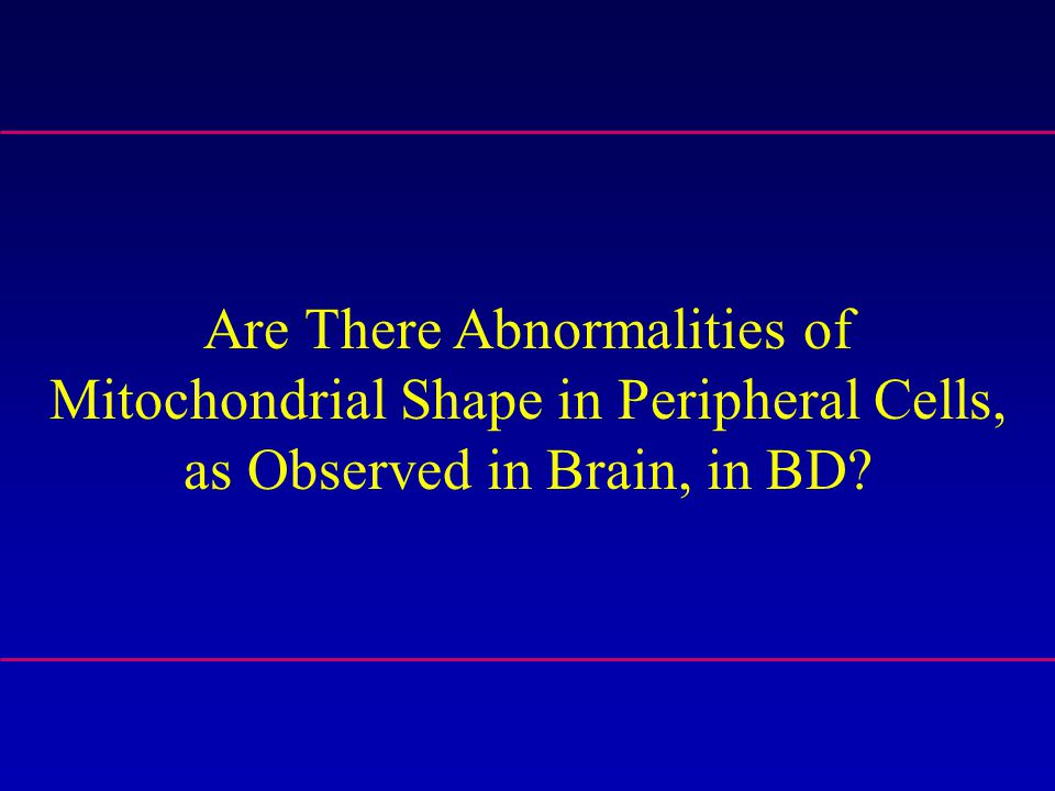 Are There Abnormalities of Mitochondrial Shape in Peripheral Cells, as Observed in Brain, in BD?