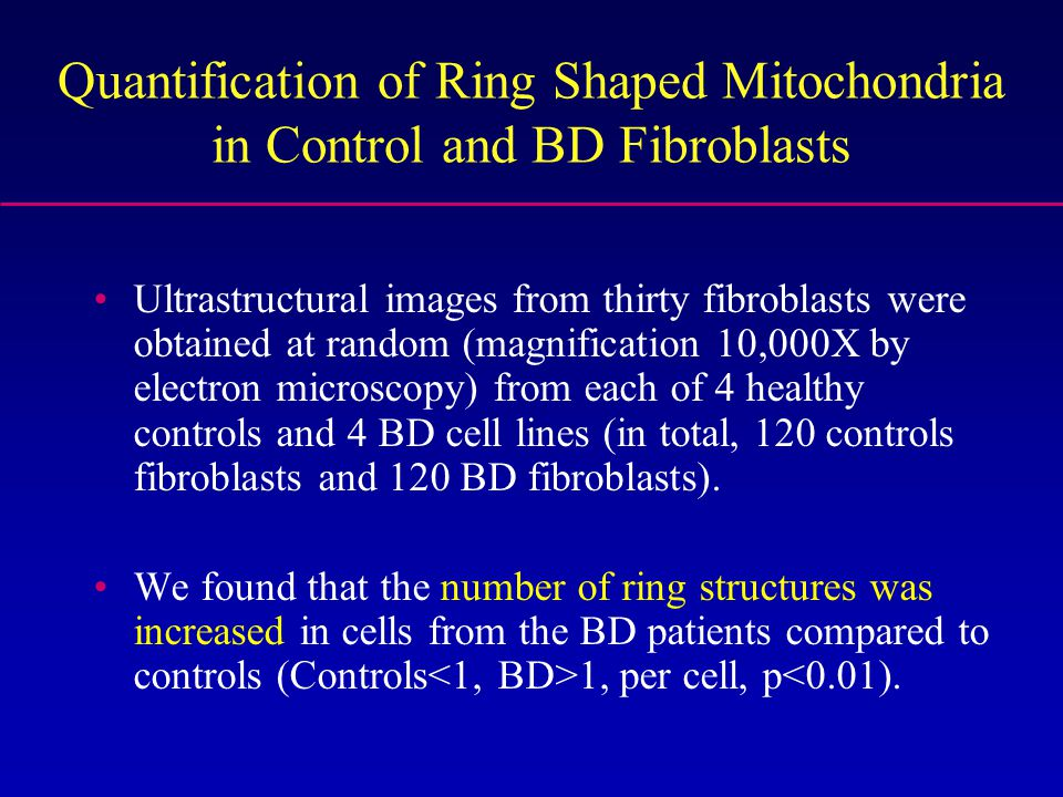 Quantification of Ring Shaped Mitochondria in Control and BD Fibroblasts Ultrastructural images from thirty fibroblasts were obtained at random (magnification 10,000X by electron microscopy) from each of 4 healthy controls and 4 BD cell lines (in total, 120 controls fibroblasts and 120 BD fibroblasts).
