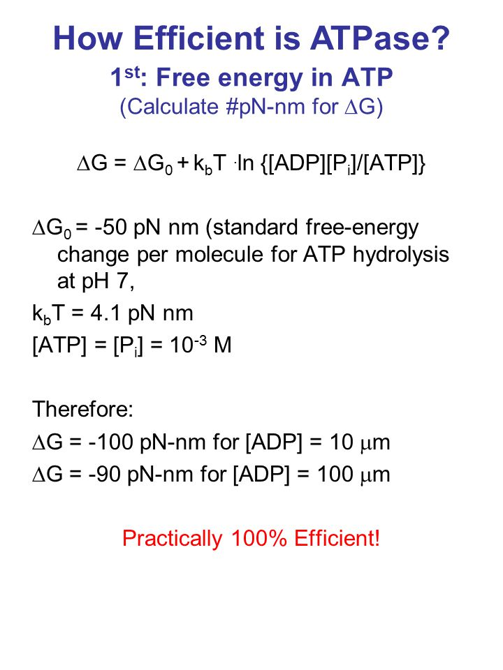 1 st : Free energy in ATP (Calculate #pN-nm for  G)  G =  G 0 + k b T.