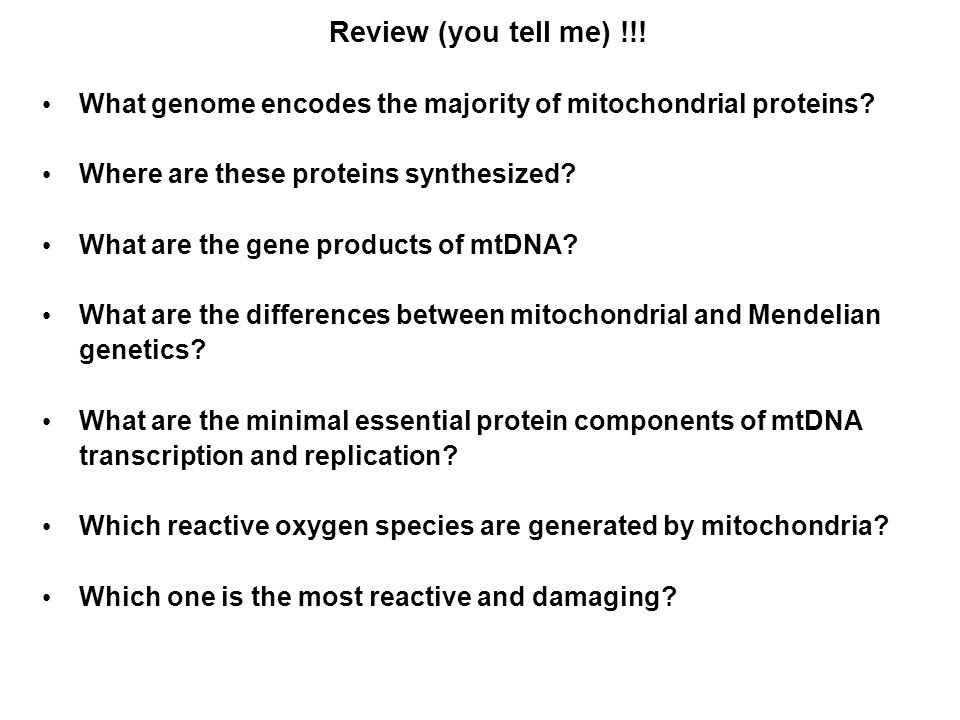 Review (you tell me) !!.What genome encodes the majority of mitochondrial proteins.