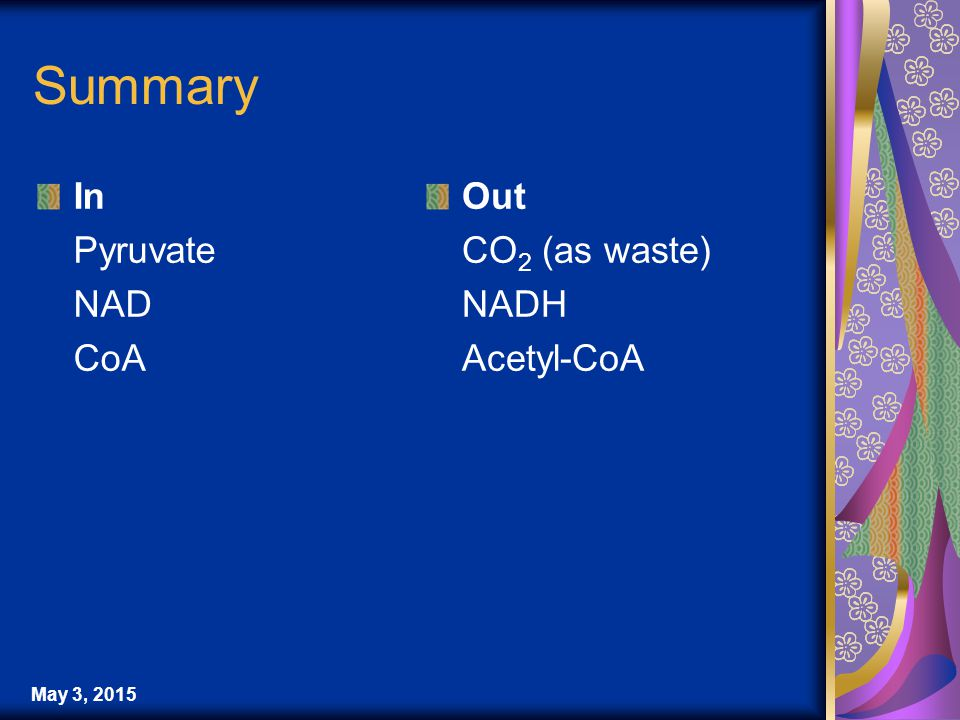 May 3, 2015 Summary In Pyruvate NAD CoA Out CO 2 (as waste) NADH Acetyl-CoA