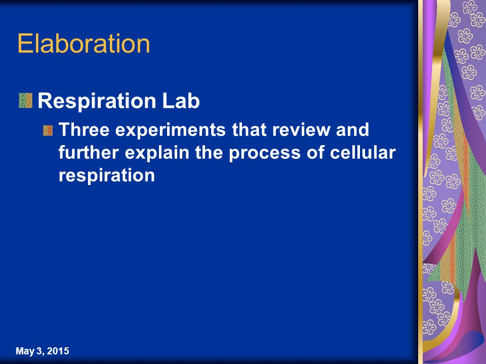 May 3, 2015 Elaboration Respiration Lab Three experiments that review and further explain the process of cellular respiration